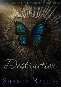 Destruction-Sharon-Bayliss-210x300